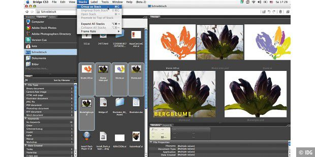 Test Adobe Bridge und Version Cue: 05stack