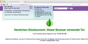 Tor: Anonym surfen mit Onion Browser und Co.