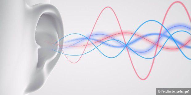 beste in ear bluetooth kopfhörer